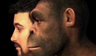 Откритие поставя под въпрос теориите на еволюцията